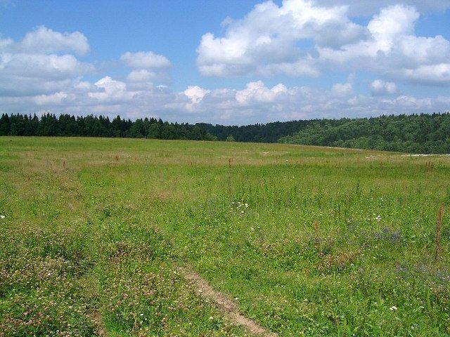Как выбрать земельный участок
