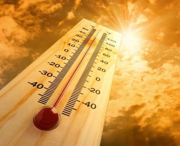 Ученые считают, что длительная жара влияет на мозговую деятельность человека