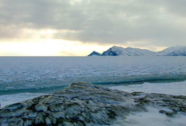 Тихий океан замерзнет: наступление Малого ледникового периода идет с глубин океана