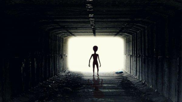 Эксперт: После крушения Розуэлльского НЛО инопланетные существа выжили