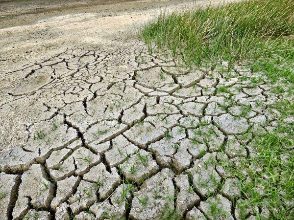 Север Америки скоро станет пустыней