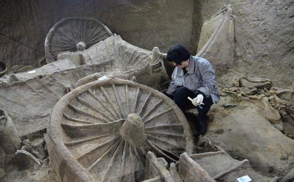 В Индии археологи обнаружили колесницы возрастом 4 тысячи лет