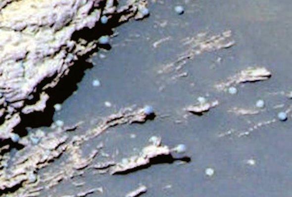 «Грибы колонизировали Марс»: Ровер NASA заснял на фото «первых инопланетян» – учёные