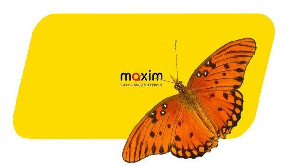 «Прощай, Максим!»: водители такси требуют плату даже за перевозку бабочки