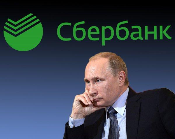 600 тысяч за опрос: Мошенники обманывают россиян от имени Путина и «Сбербанка»