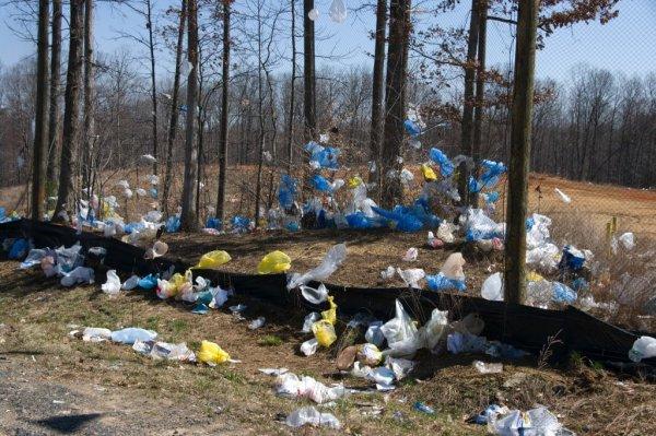 Новый «удар» по экологии: Эко-мешки приносят больше вреда окружающей среде, чем полиэтиленовые пакеты