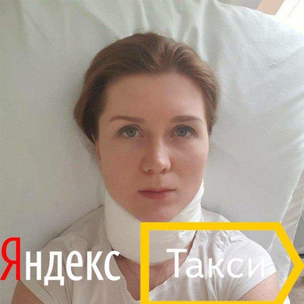 «Животный» сервис: Яндекс.Такси не несет никакой ответственности за аварии по вине водителя