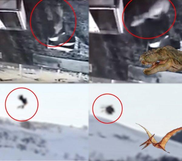 МКС в безопасности! Рептилоиды с Нибиру бросили станцию и высадили своих шпионов в Грузии