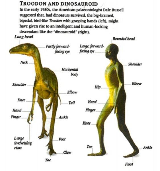 Человечество произошло от шизофреников-рептилоидов - найдены останки динозавров