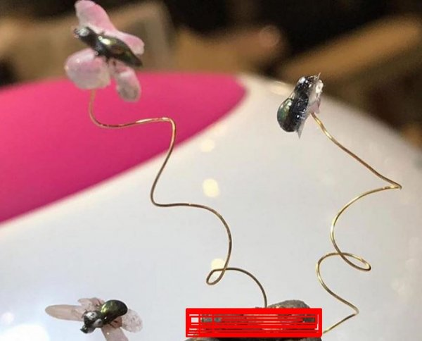 Курам на смех! «Навозный» маникюр с мухами вызвал отвращение в Сети