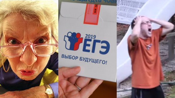 Неудобная правда о ЕГЭ: «Бомба замедленного действия» под российским образованием